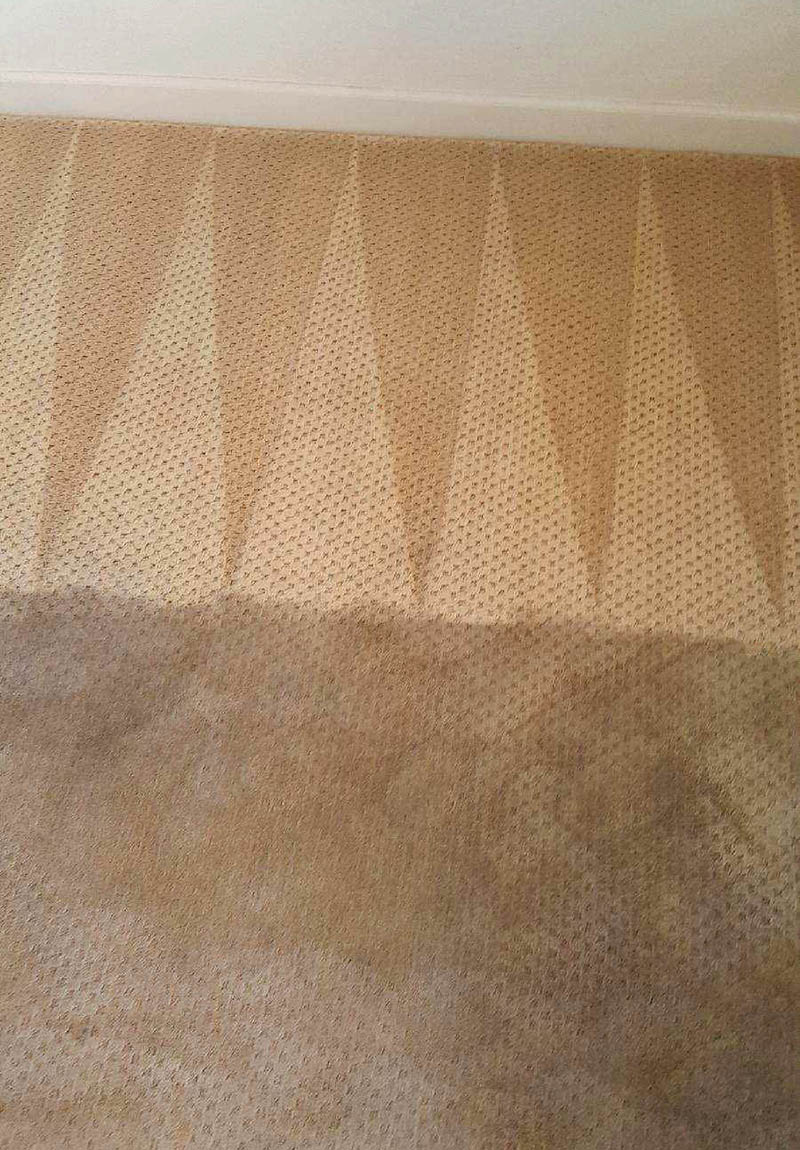Carefree Floors Services - Carpet Cleaning